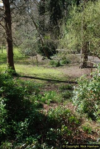 2016-03-25 A Spring walk.  (241)241