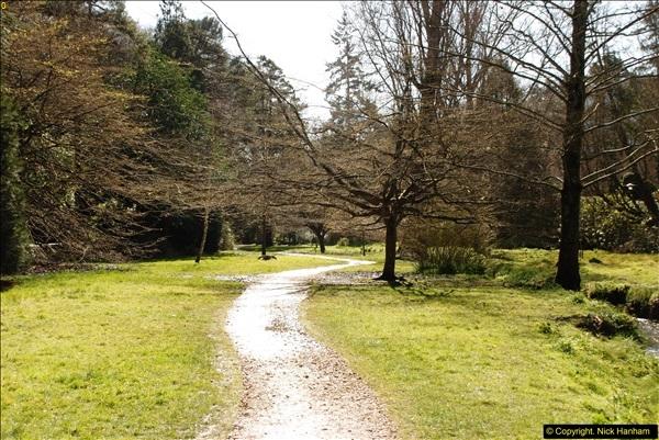 2016-03-25 A Spring walk.  (8)008