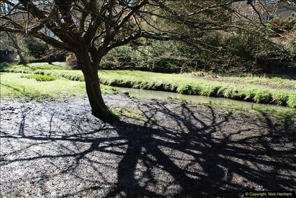2016-03-25 A Spring walk.  (9)009