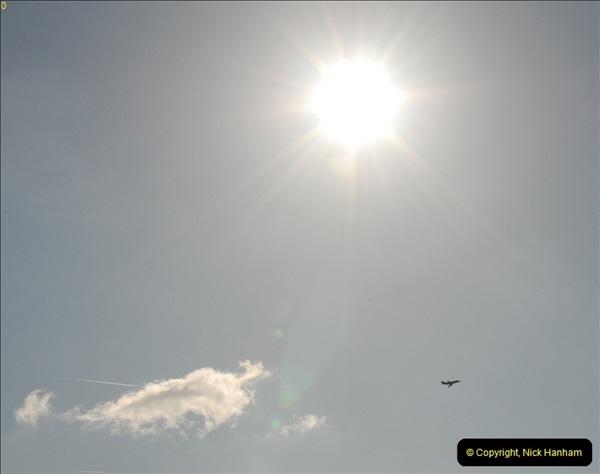 2012-03-06 Over Longham, Dorset.  (3)006