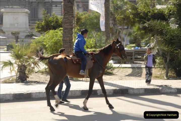 2011-11-07 to 08 Alexandria, Egypt.  (33)