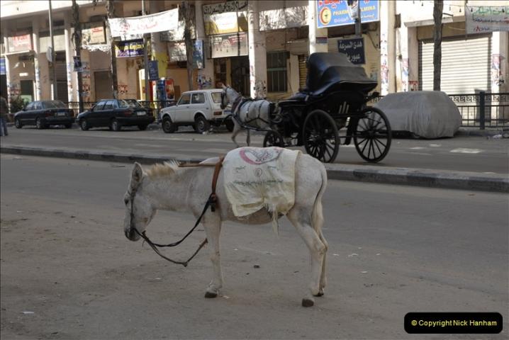 2011-11-07 to 08 Alexandria, Egypt.  (44)