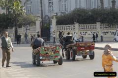 2011-11-07 to 08 Alexandria, Egypt.  (23)