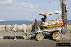 2011-11-07 to 08 Alexandria, Egypt.  (24)