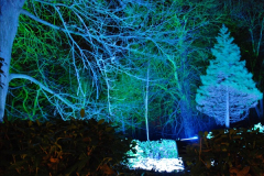 2017-12-15 Kingston Lacy by Night. (20)020