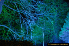 2017-12-15 Kingston Lacy by Night. (21)021