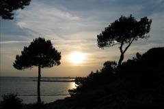 2005 July. Sunset 1. Poole Harbour, Dorset. (4)098
