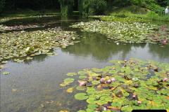 2007-07-12 Bennets Water Gardens, Weymouth, Dorset. (12)264
