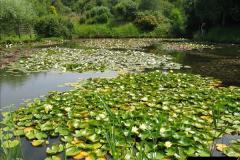 2007-07-12 Bennets Water Gardens, Weymouth, Dorset. (15)267
