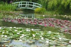 2007-07-12 Bennets Water Gardens, Weymouth, Dorset. (18)270