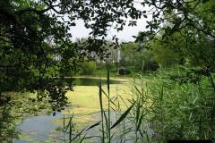 2007-07-12 Bennets Water Gardens, Weymouth, Dorset. (23)275