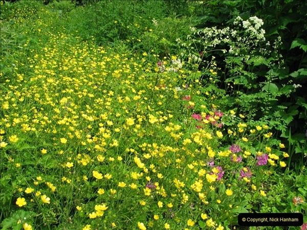 2004-06-09 Wisley RHS.  (20)020