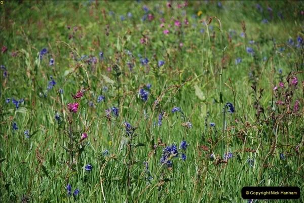 2009-05-19 Sandbanks & Studland, Dorset.  (16)016