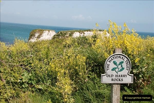 2009-05-19 Sandbanks & Studland, Dorset.  (35)035