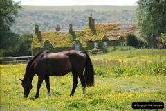 2009-05-19 Sandbanks & Studland, Dorset.  (21)021