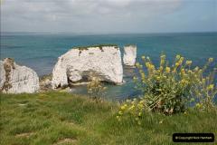 2009-05-19 Sandbanks & Studland, Dorset.  (38)038