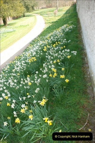 2009-04-02 Cranbourne, Dorset.  (22)022