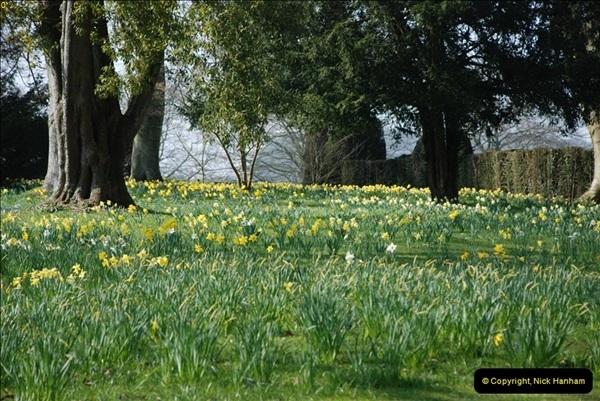 2009-04-02 Cranbourne, Dorset.  (35)035
