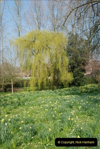 2009-04-02 Cranbourne, Dorset.  (62)062