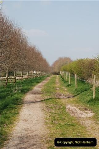 2009-04-02 Cranbourne, Dorset.  (9)009