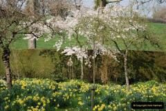 2009-04-02 Cranbourne, Dorset.  (46)046