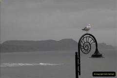 2011-03-10 Lyme Regis, Dorset.  (9)083