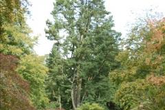 2011-09-15 Stourhead, Wiltshire. (24)267