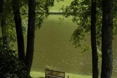 2011-09-15 Stourhead, Wiltshire. (30)273