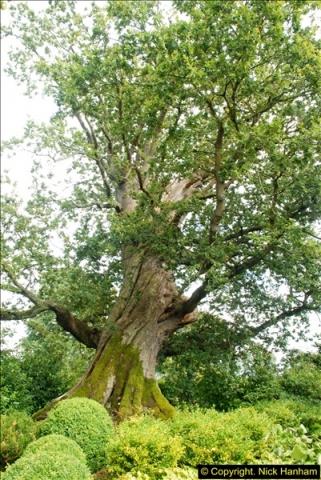 2014-08-11 The Vyne (NT) Basingstoke, Hampshire.  (40)