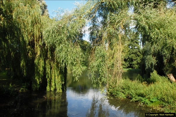 2014-08-11 The Vyne (NT) Basingstoke, Hampshire.  (61)