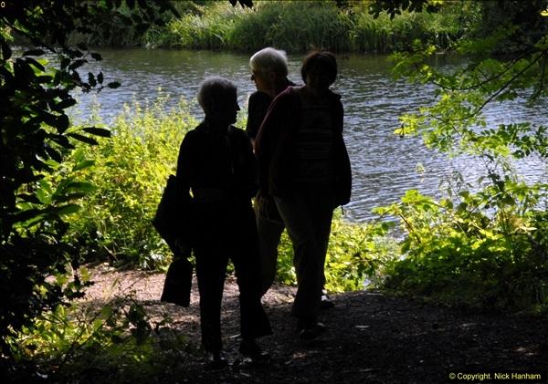 2014-08-11 The Vyne (NT) Basingstoke, Hampshire.  (7)