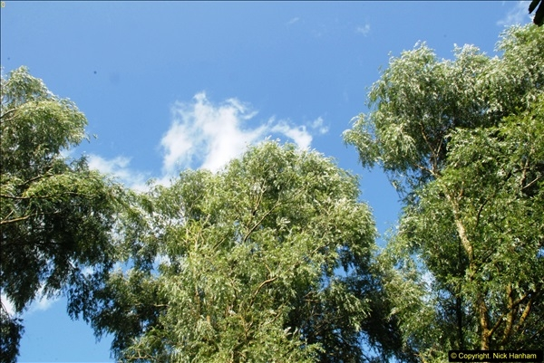 2014-08-11 The Vyne (NT) Basingstoke, Hampshire.  (71)
