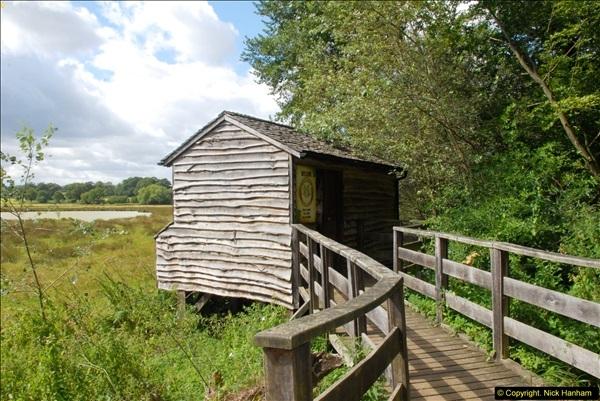 2014-08-11 The Vyne (NT) Basingstoke, Hampshire.  (8)