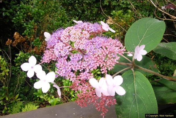 2014-08-19 Hillier Gardens, Romsey, Hampshire.  (114)
