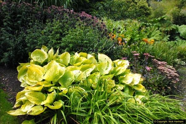 2014-08-19 Hillier Gardens, Romsey, Hampshire.  (128)