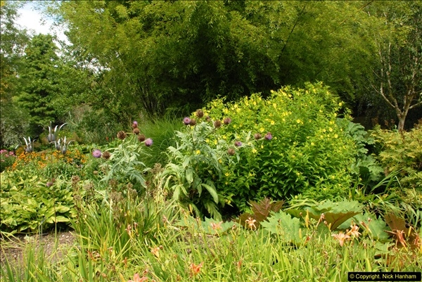 2014-08-19 Hillier Gardens, Romsey, Hampshire.  (129)
