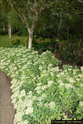 2014-08-19 Hillier Gardens, Romsey, Hampshire.  (154)