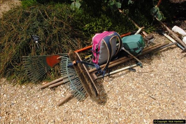 2014-08-19 Hillier Gardens, Romsey, Hampshire.  (167)