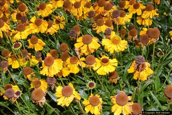 2014-08-19 Hillier Gardens, Romsey, Hampshire.  (169)