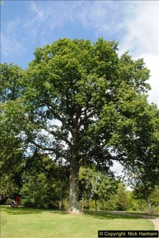 2014-08-19 Hillier Gardens, Romsey, Hampshire.  (171)