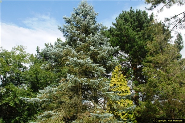 2014-08-19 Hillier Gardens, Romsey, Hampshire.  (175)