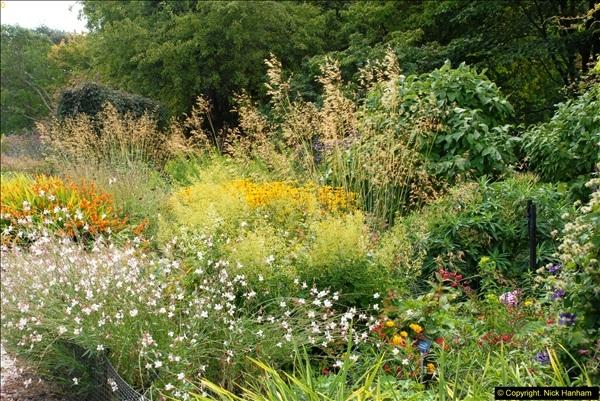 2014-08-19 Hillier Gardens, Romsey, Hampshire.  (19)