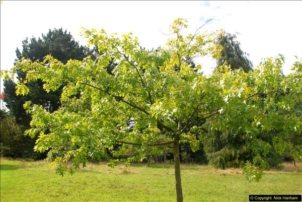2014-08-19 Hillier Gardens, Romsey, Hampshire.  (192)