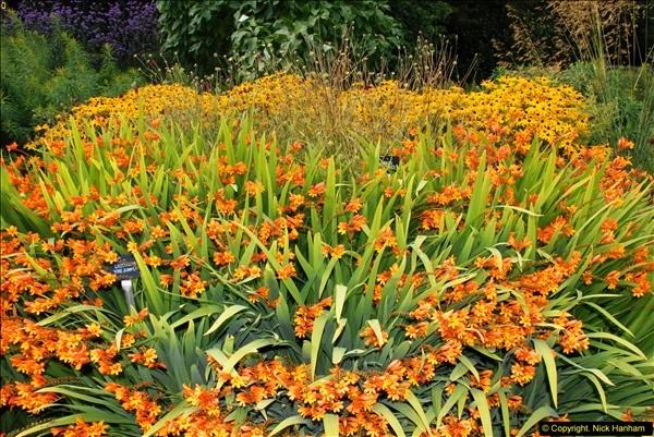 2014-08-19 Hillier Gardens, Romsey, Hampshire.  (21)