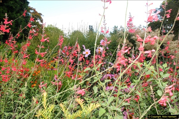 2014-08-19 Hillier Gardens, Romsey, Hampshire.  (28)