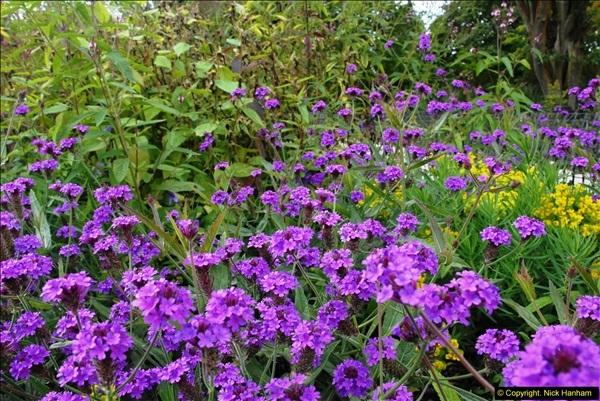 2014-08-19 Hillier Gardens, Romsey, Hampshire.  (36)