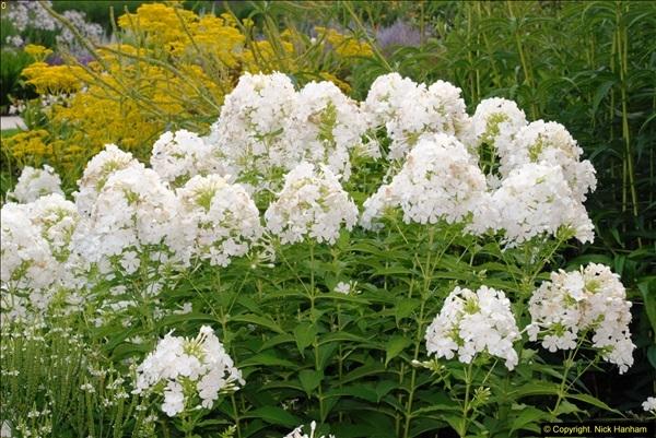 2014-08-19 Hillier Gardens, Romsey, Hampshire.  (38)
