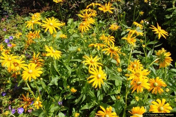 2014-08-19 Hillier Gardens, Romsey, Hampshire.  (51)