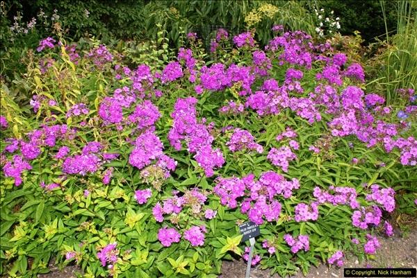 2014-08-19 Hillier Gardens, Romsey, Hampshire.  (73)