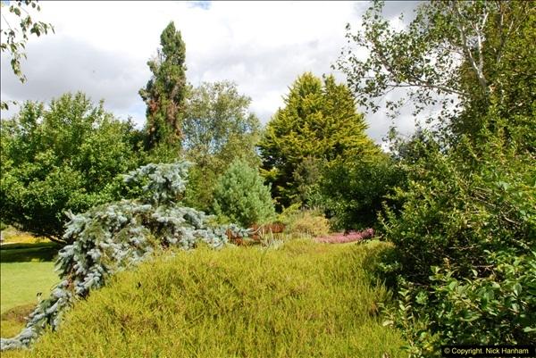2014-08-19 Hillier Gardens, Romsey, Hampshire.  (93)